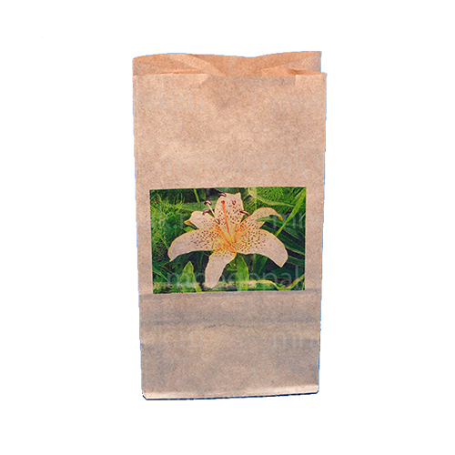 Пример бумажного пакета